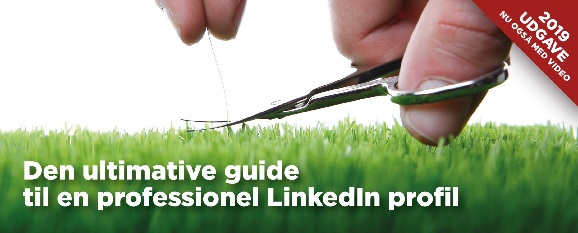 LinkedIn profil guide: Den ultimative guide til en professionel LinkedIn profil - Social Selling Company