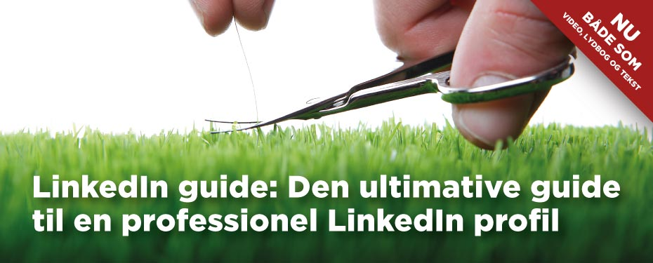 LinkedIn profil guide: Den ultimative guide til en professionel LinkedIn profil